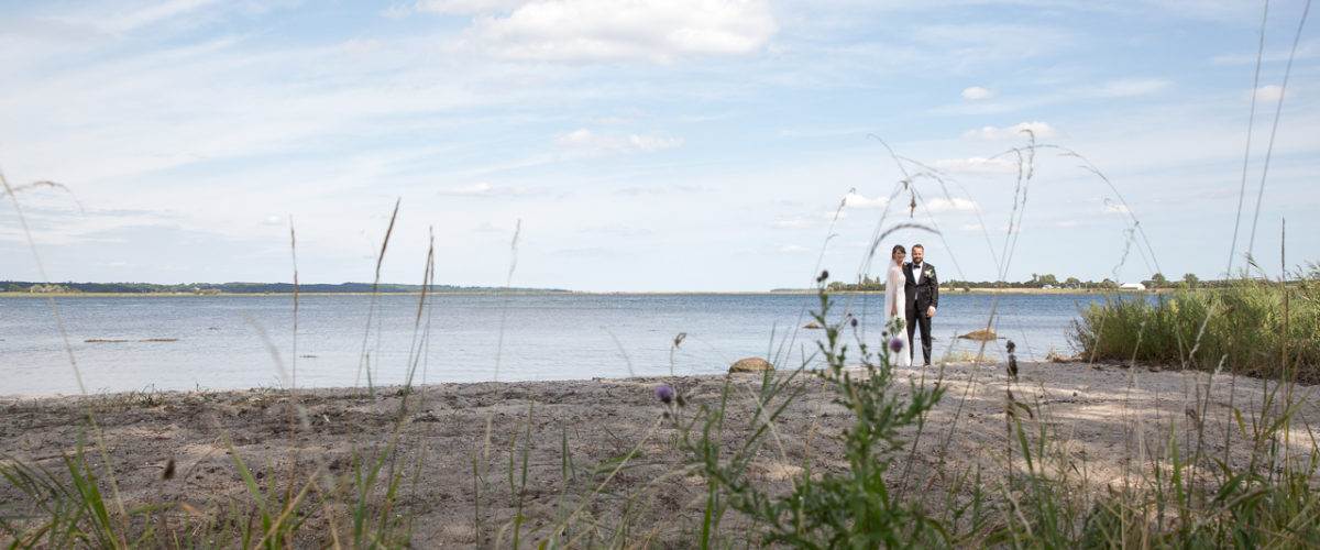 Parbillede på stranden, gennem græsset